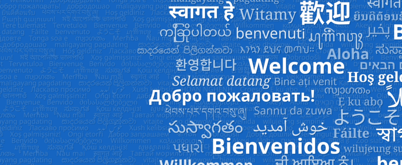 Survey Translations:  The Challenges with Piping Text